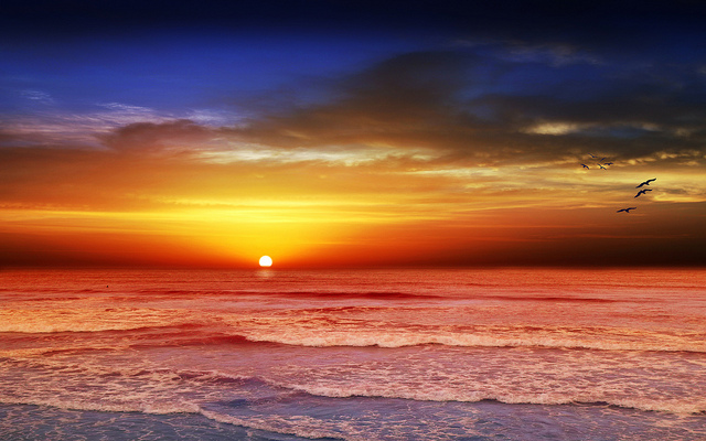 Here is a soothing picture of a beach at sunset to help prevent rage stroke. Picture by https://www.flickr.com/photos/chiaralily/